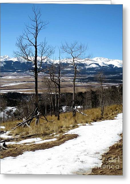 Colorado Trail 1 Greeting Card by Claudette Bujold-Poirier