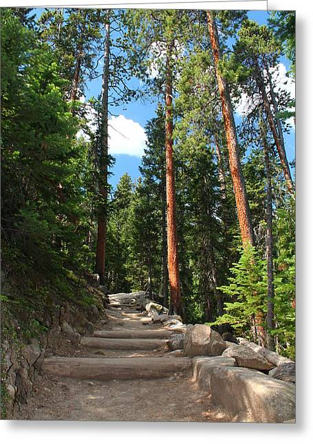 Colorado Trail Greeting Card by Alicia Knust