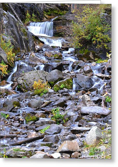 Colorado Waterfall Mountain Stream Greeting Card by Andrea Hazel Ihlefeld