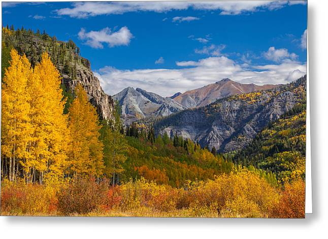 Colorado's Carpet Of Color Greeting Card by Darren  White