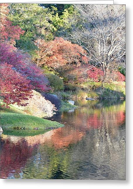 Colored Reflections Greeting Card by Lena Hatch