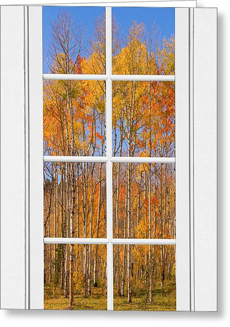 Colorful Aspen Tree View White Window Greeting Card by James BO  Insogna