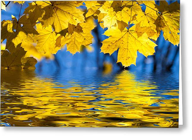 Colorful Autumn Leaves Greeting Card by Boon Mee