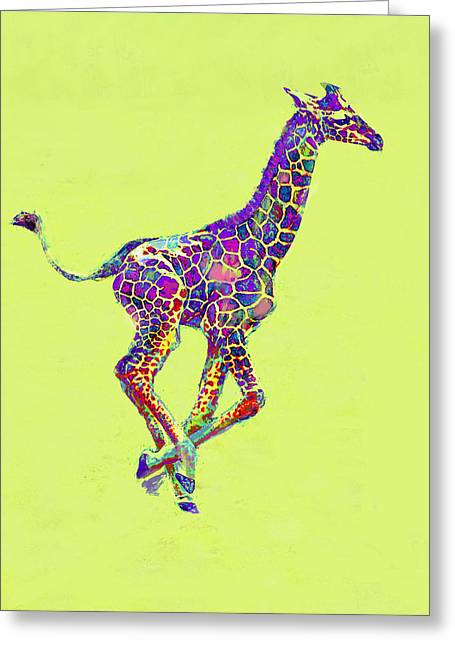 Colorful Baby Giraffe Greeting Card by Jane Schnetlage