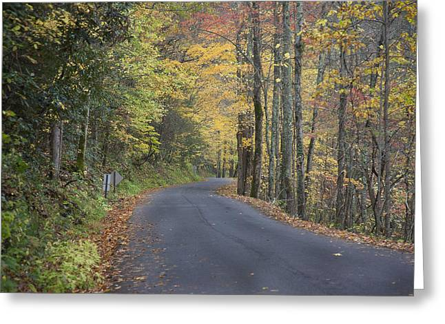 Greeting Card featuring the photograph Colorful Backroads by Robert Camp