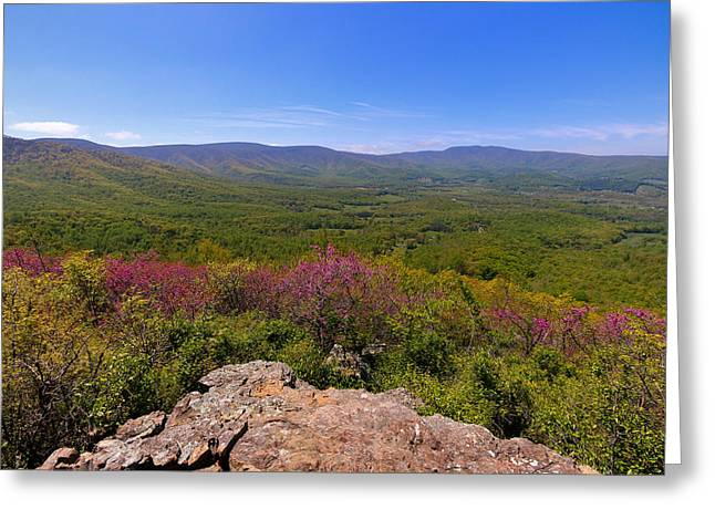 Colorful Blue Ridge Spring Greeting Card