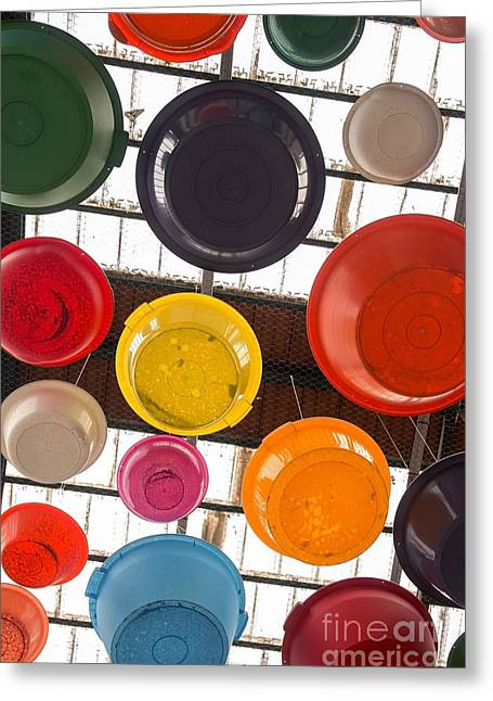 Colorful Bowls Greeting Card by Carlos Caetano