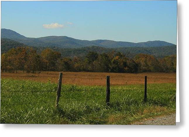 Colorful Cades Cove Greeting Card
