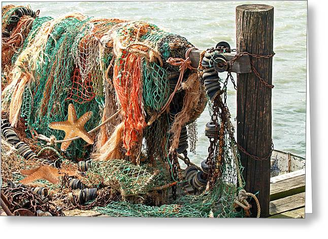 Colorful Catch - Starfish In Fishing Nets Greeting Card by Gill Billington