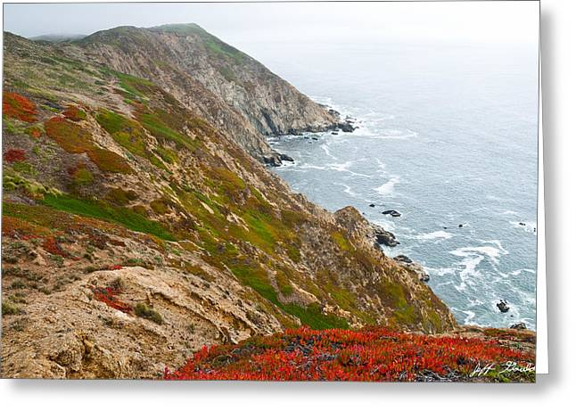 Greeting Card featuring the photograph Colorful Cliffs At Point Reyes by Jeff Goulden