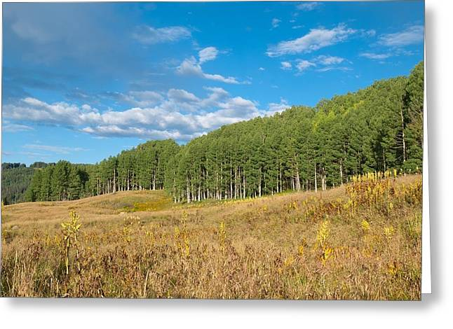 Colorful Colorado Autumn Greeting Card by Cascade Colors