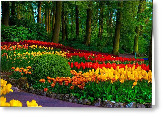 Colorful Corner Of The Keukenhof Garden 4. Tulips Display. Netherlands Greeting Card