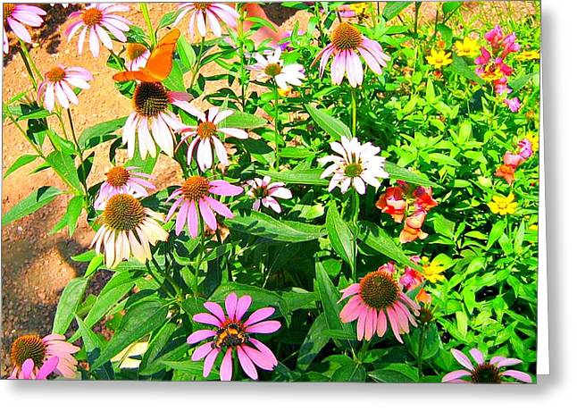 Colorful Greeting Card by Debbie Sikes
