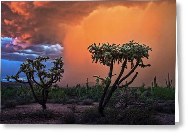 Colorful Desert Storm In Central Arizona Greeting Card