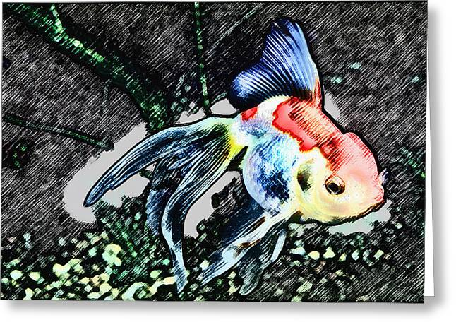 Colorful Fantail Goldfish Greeting Card by Wernher Krutein