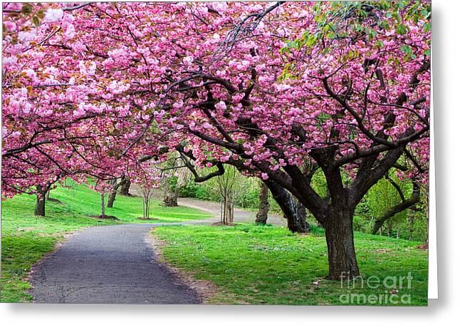 Colorful  Flower Tree Vivid Greeting Card