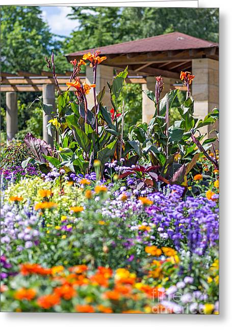 Colorful Flowerbed Greeting Card by Palatia Photo