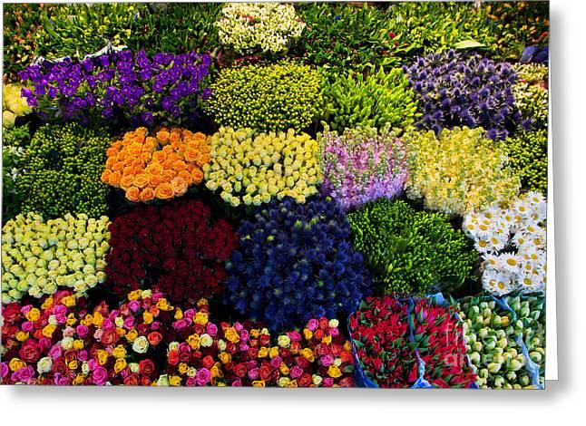 Colorful Flowers Background Greeting Card by Michal Bednarek