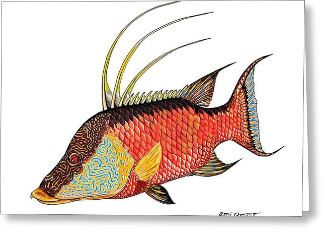 Colorful Hogfish Greeting Card by Steve Ozment