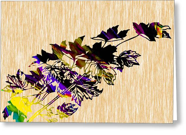 Colorful Leaves Greeting Card by Marvin Blaine