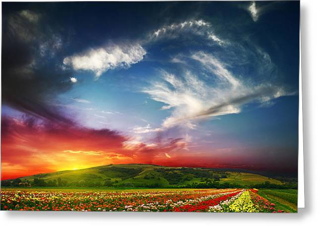 Colorful Nature Greeting Card by Boon Mee