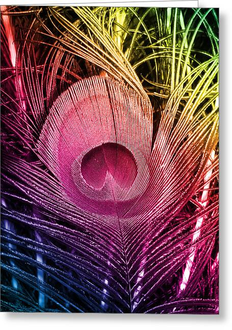 Colorful Peacock Feather Greeting Card