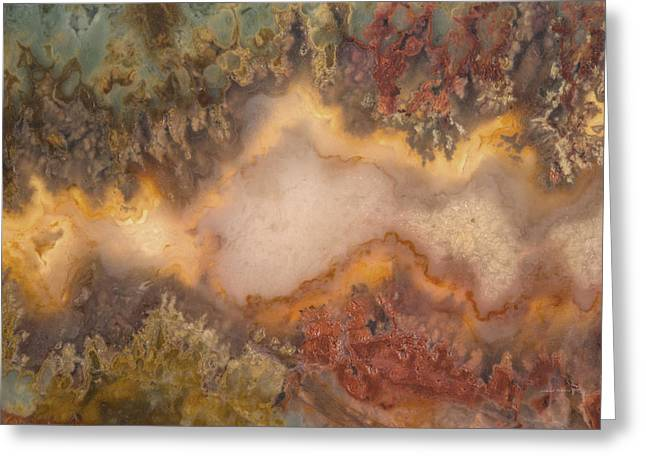 Colorful Plume Agate Greeting Card by Leland D Howard