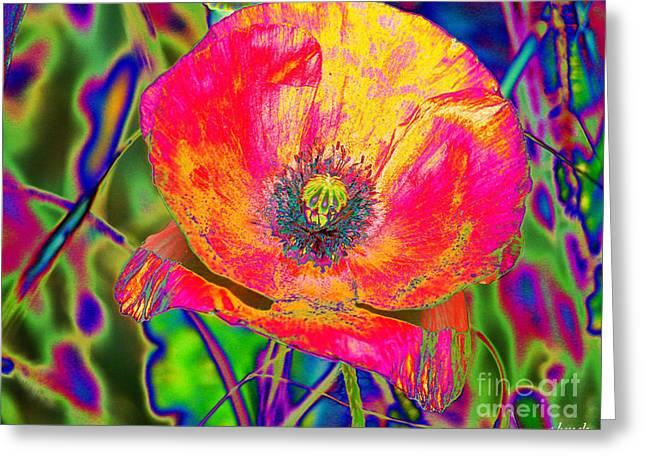 Colorful Poppy Greeting Card by Carol Lynch