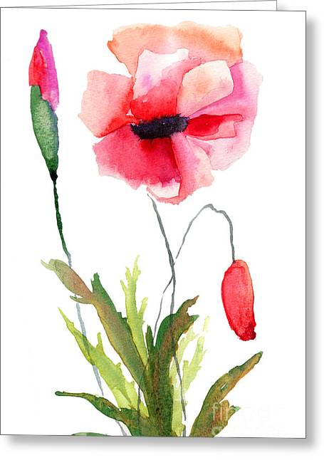 Colorful Poppy Flowers Greeting Card