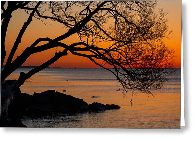Colorful Quiet Sunrise On Lake Ontario In Toronto Greeting Card