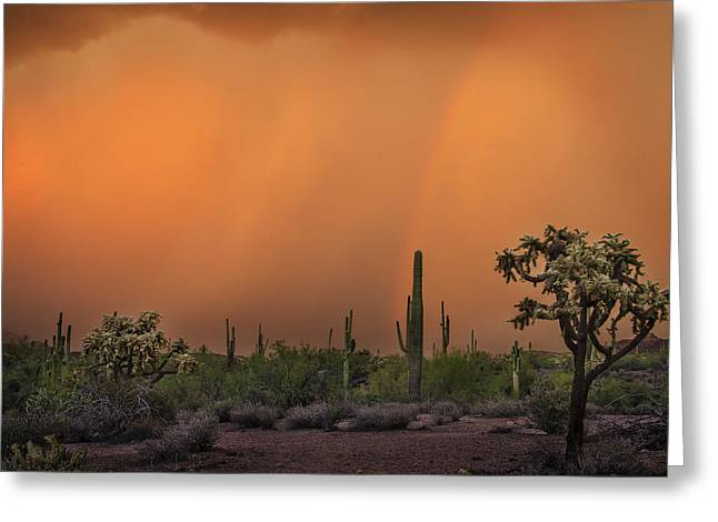 Colorful Rainbow With Dust Storm At Lost Dutchman State Park  Greeting Card