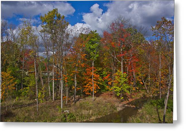 Colorful Ravine A Wider Angle Greeting Card by Bill Woodstock