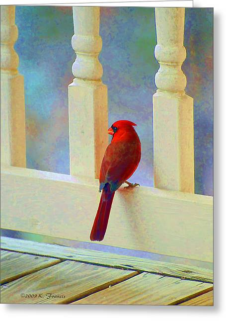 Colorful Redbird Greeting Card by Kenny Francis