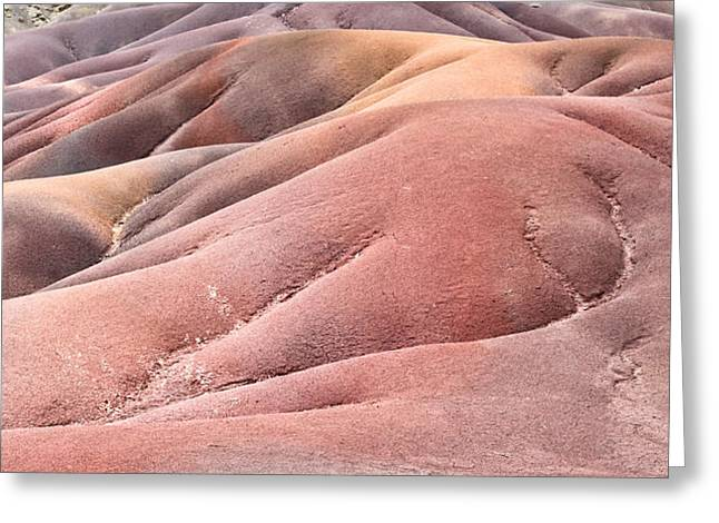 Colorful Sands Greeting Card by Tom Gowanlock