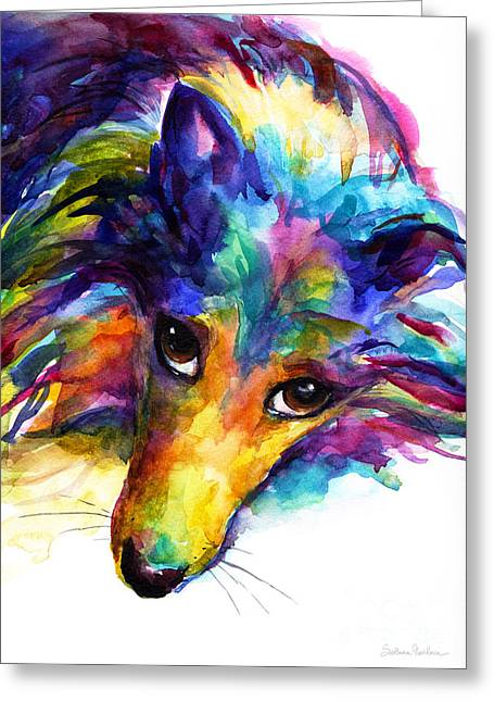 Colorful Sheltie Dog Portrait Greeting Card by Svetlana Novikova