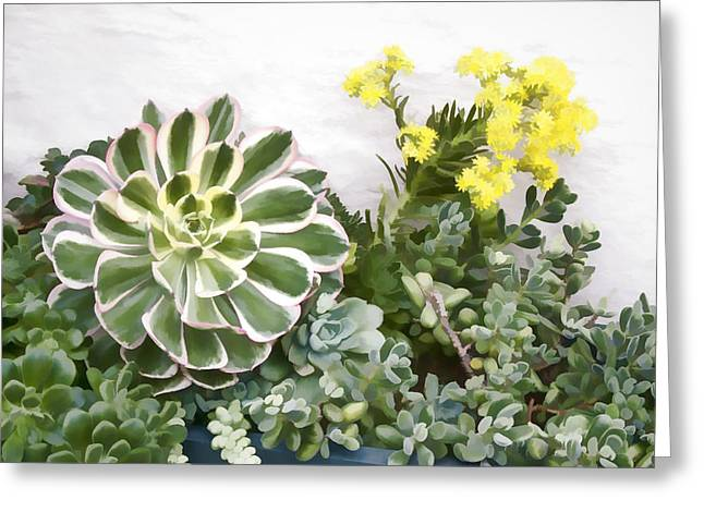Greeting Card featuring the digital art Colorful Succulents by Photographic Art by Russel Ray Photos