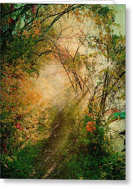 Colorful Sunlit Path Greeting Card by Brooke T Ryan