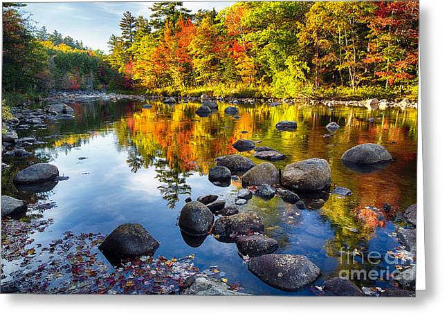 Colorful Trees Along The Swift River Greeting Card by George Oze