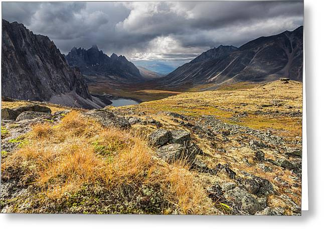 Colorful Tundra In Autumn In Tombstone Greeting Card