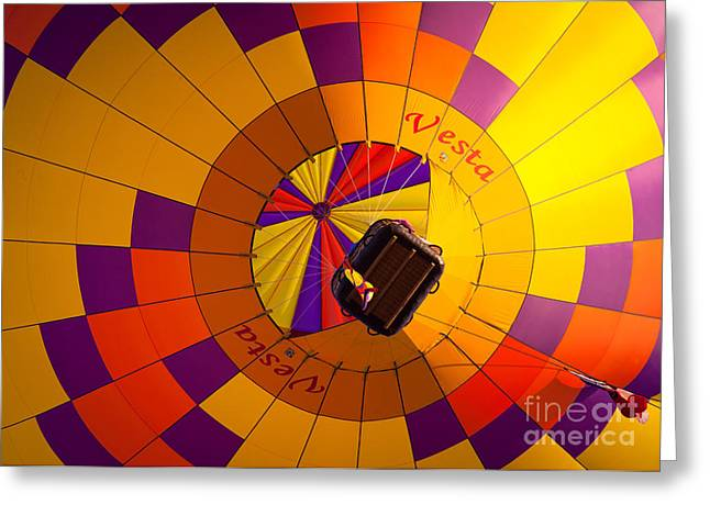 Colorful Underbelly Greeting Card by Inge Johnsson