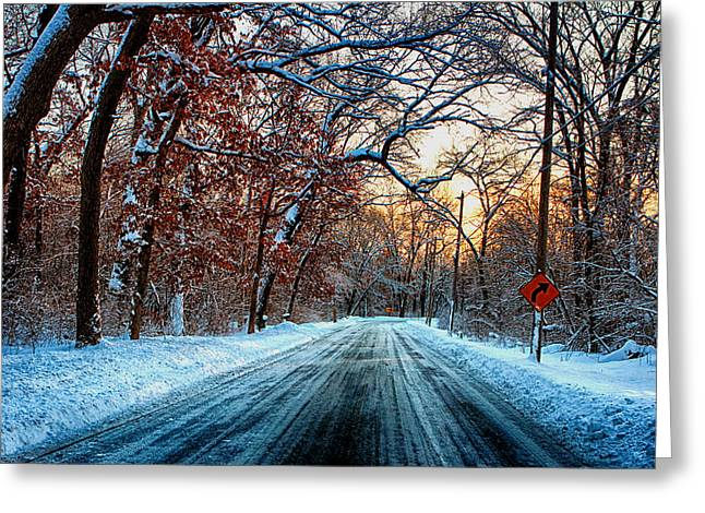 Colorful Winter Greeting Card by Jerome Lynch