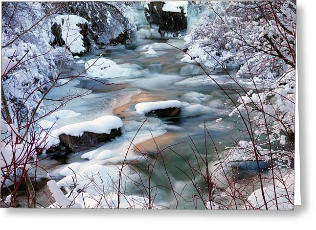 Colorful Winter Greeting Card by Leland D Howard