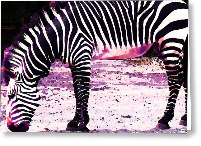 Colorful Zebra 2 - Buy Black And White Stripes Art Greeting Card by Sharon Cummings