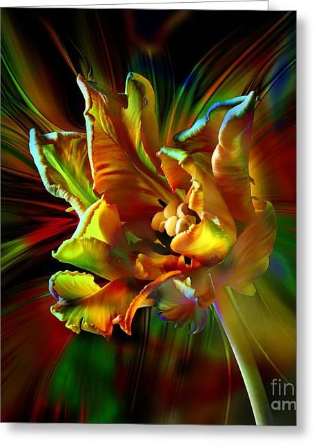 Colorfull Tulip Greeting Card