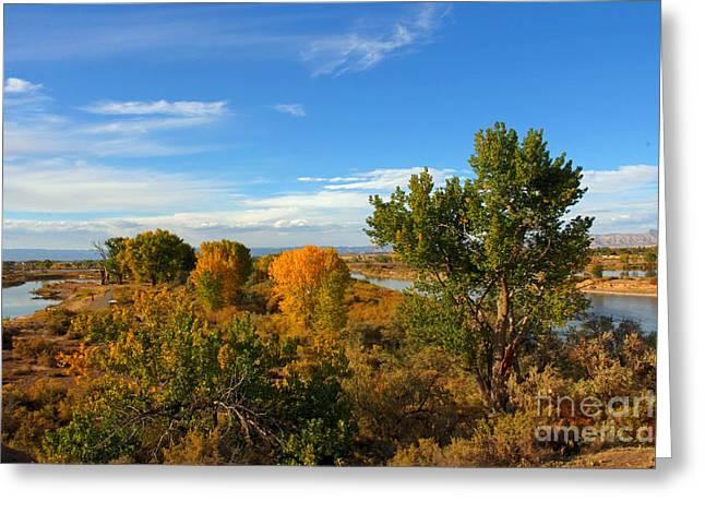 Colors Along The Colorado Greeting Card by Bob Hislop