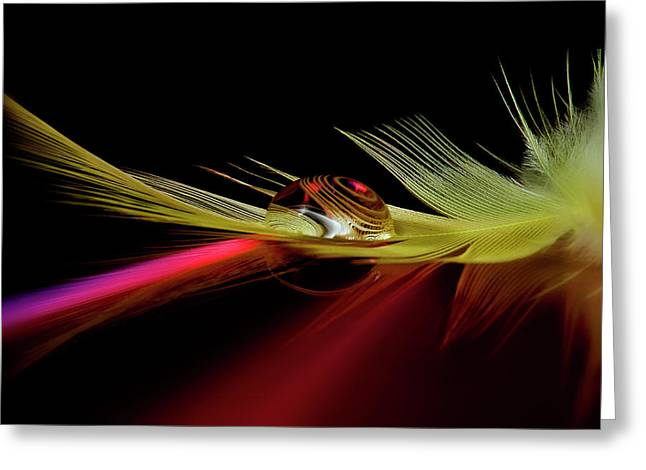 Colors In The Drop Greeting Card by Aida Ianeva