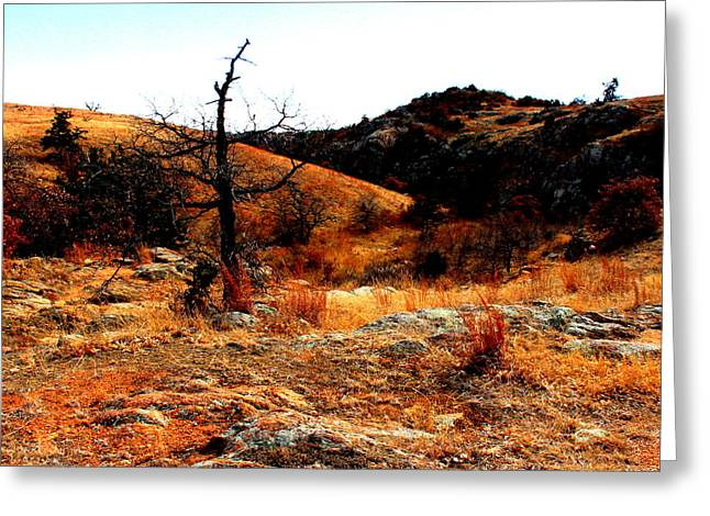 Colors Greeting Card by Mickey Harkins