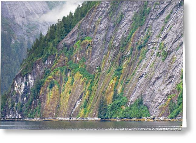 Colors Of Alaska - Misty Fjords Greeting Card