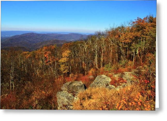 Colors Of Autumn In Shenandoah National Park Greeting Card by Dan Sproul