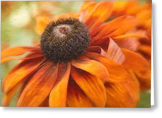 Colors Of Autumn Greeting Card by Kim Hojnacki
